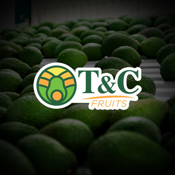 T&C Maquiladora